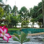 Lake View from the Pool, Viang Yonok Hotel Chiang Saen Thailand