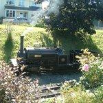 Launceston Steam Railway Foto