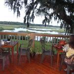 Beautiful Marsh View
