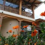 Balcon de Vino & Olivo