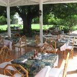 Gazebo & Outdoor Dining