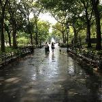 Washington Square, beautiful on a rainy day.