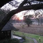 Gorgeous Morning at King's Camp :)