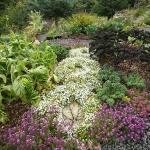 Lodge Vegetable Garden