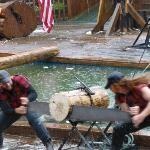 lumberjacks working hard