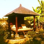 Photo de Sawah Lovina Bungalows