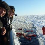 Arctic Swim on a Sampo Icebreaker cruise
