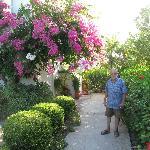 Paul - in the garden