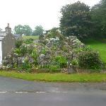 edwardian rock garden