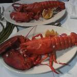2 and 1-1/4 pound lobsters