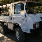 The Mighty Pinzgauer