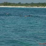 Snorkeling/Fishing Trip