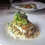 Roasted Cod with toasted garlic spätzle, sauerkraut, crème fraîche and cornichon mayonnaise