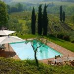 Pool and Il Fagilori olive groves & vineyards