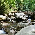 The Chimneys stream area