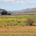 the Biedouw valley