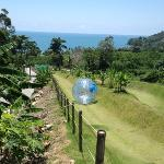 Zorbing with a beautiful view