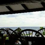 View from the bar