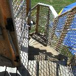 Narrow steps up to the treehouse.