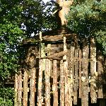 The tree house: romantic at sunset or a good centrepoint for waterfight or camp fire?