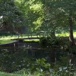 Small pond with bridge