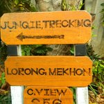 jungle trekking verso il PIR