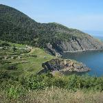 Overlooking Meat Cove off the Cabot Trail, NS