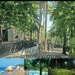 Photo of Camping Villaggio Internazionale