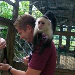 Monkeying arround