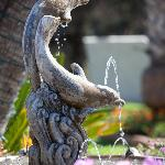 Fountain in the Roundabout