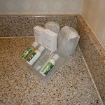 Hilton Garden Inn El Segundo Bathroom