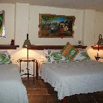 Iguana Room (48385241)