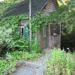Little Shed by babbling brook