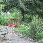 Beautiful Grounds and Gardens
