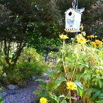 Birdfeeders in garden outside inn