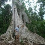 Cenotes 7