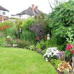 Dawn's Garden
