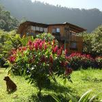 Hotel met sy pragtige tuin