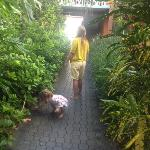 Nicest Garden in Florida