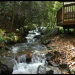 Foto de Black Bear Cottage in the Woods of Maggie Valley