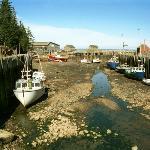 Foto de Tides In Hall's Harbour