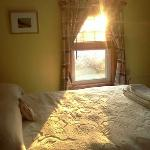 Morning sun from Yellow room
