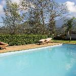 Pool and view of Mt. Mehru