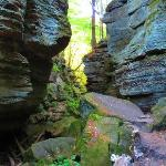 Parfrey's Glen Hiking Trail