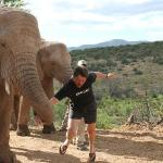 Armwrestling with elephant