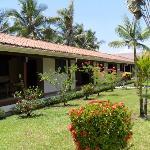 Habitaciones y Jardín