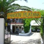 Pansion Platana