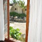 Bedroom window view.