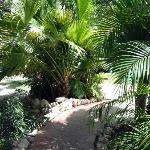 Path from the lobby to our Casita