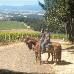 A WONDERFUL ride through the vineyards!